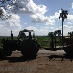 Engage Cuba and USACC Report on Future Prospects for US Agribusiness in Cuba