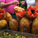 Cultivating Cuba's Agricultural Sector