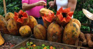 agriculture-cuba-farmer-produce