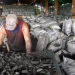 US – Cuba Trade Deal for Charcoal Export