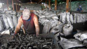 cuba-us-marabu-charcoal-deal
