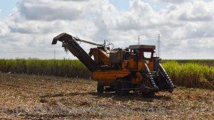 cuban-agriculture-production