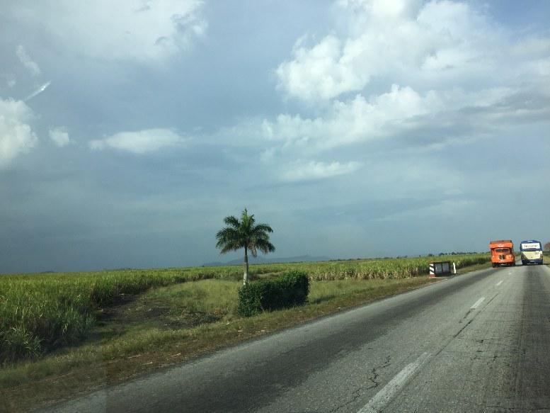 Granos-Sur-del-Jíbaro-agriculture