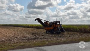 central-bank-of-cuba-issues-new-measures-for-farm-loans